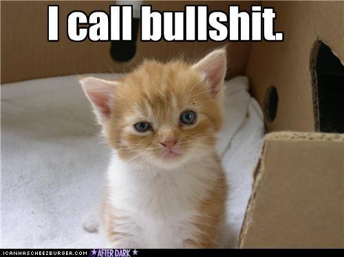 funny-pictures-skeptical-cat
